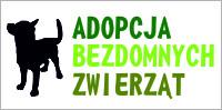 Adopcja Bezdomnych Zwierząt